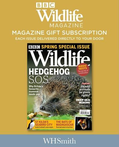 Bbc Wildlife Gift Pack