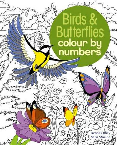 Birds Butterflies Colour By Number By Sara Storino Whsmith